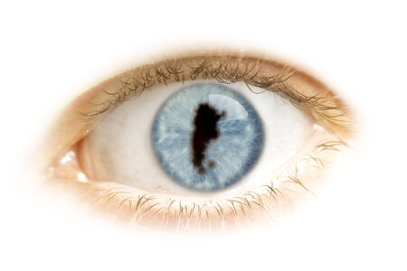 visions of america: A close-up of an eye with the pupil in the shape of Argentina.(series)