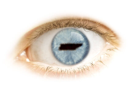 visions of america: A close-up of an eye with the pupil in the shape of Tennessee.(series)