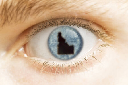 A close-up of an eye with the pupil in the shape of Idaho.(series) photo