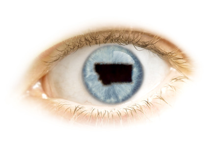 visions of america: A close-up of an eye with the pupil in the shape of Montana.(series)