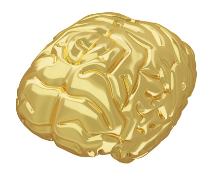 successfully: A photorealistic golden brain isolated on white  Stock Photo