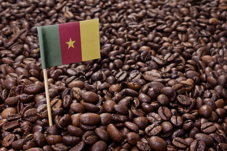 cameroonian: Flag of Cameroon sticking in roasted coffee beans.(series) Stock Photo