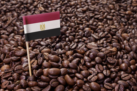 Flag of Egypt sticking in roasted coffee beans.(series) photo