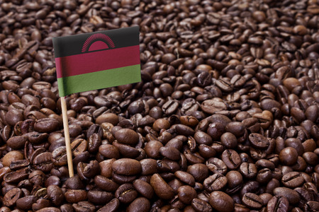 malawi flag: Flag of Malawi sticking in roasted coffee beans.(series)
