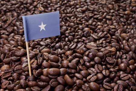 somalian: Flag of Somalia sticking in roasted coffee beans.(series)