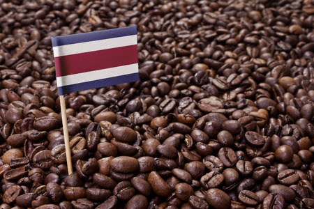 Flag of Costa Rica sticking in roasted coffee beans.(series) Stock Photo