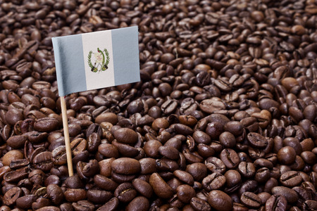 Flag of Guatemala sticking in roasted coffee beans.(series)