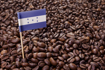 Flag of Honduras sticking in roasted coffee beans.(series) Stock Photo