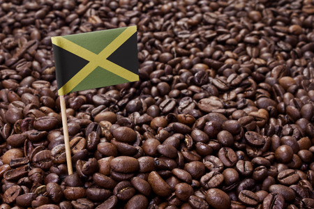 jamaica: Flag of Jamaica sticking in roasted coffee beans.(series)