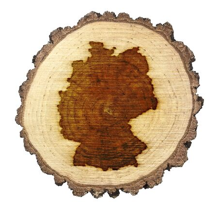 BRANDED: A slice of oak and the shape of Germany branded onto .(series) Stock Photo