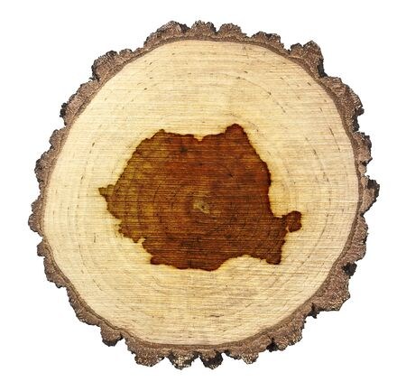 BRANDED: A slice of oak and the shape of Romania branded onto