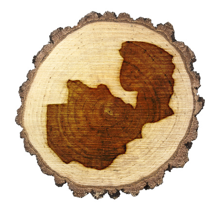 zambian: A slice of oak and the shape of Zambia branded onto .(series)