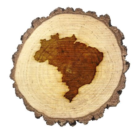 BRANDED: A slice of oak and the shape of Brazil branded onto Stock Photo