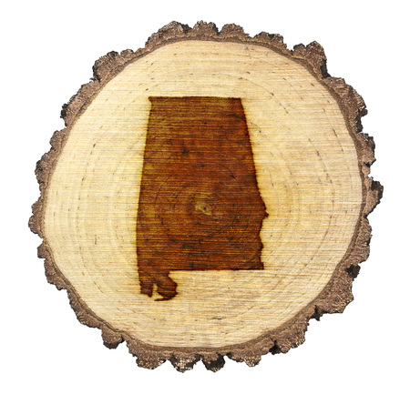 BRANDED: A slice of oak and the shape of Alabama branded onto .(series)