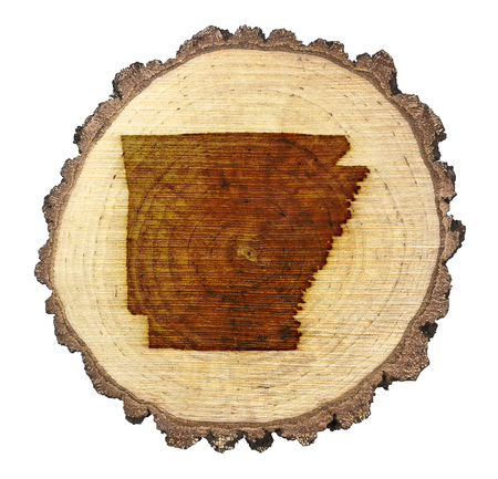 BRANDED: A slice of oak and the shape of Arkansas branded onto .(series)