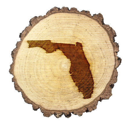 floridian: A slice of oak and the shape of Florida branded onto Stock Photo