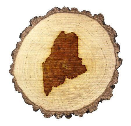 A slice of oak and the shape of Maine branded onto