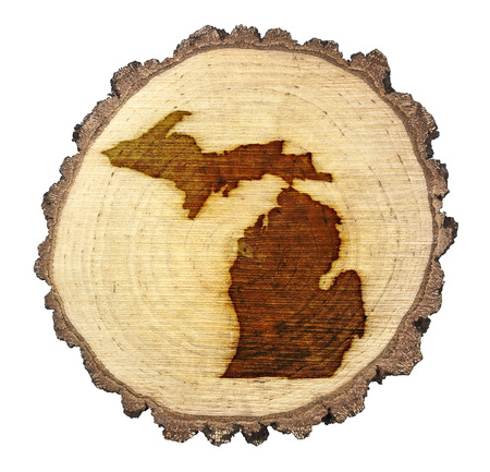 BRANDED: A slice of oak and the shape of Michigan branded onto