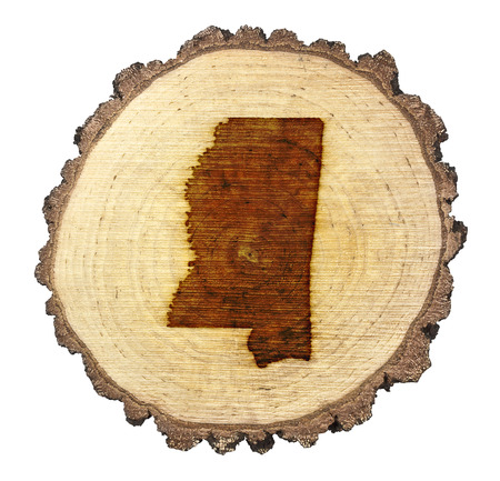 BRANDED: A slice of oak and the shape of Mississippi branded onto .(series)