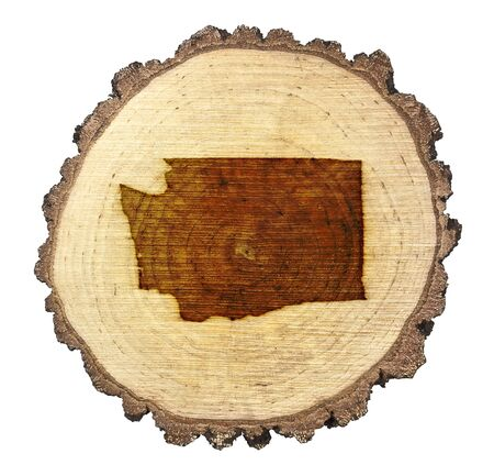 BRANDED: A slice of oak and the shape of Washington branded onto .(series) Stock Photo
