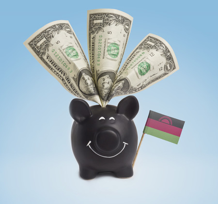 malawian flag: One dollar banknote in a smiling piggybank of Malawi.(series)