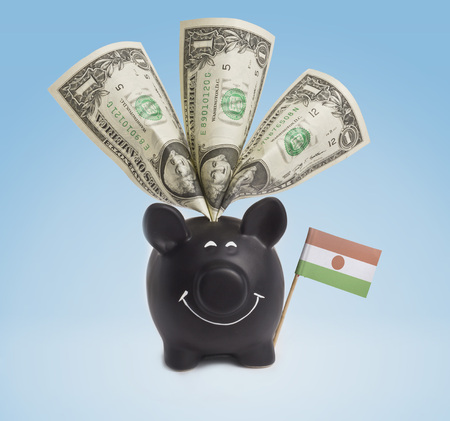 One dollar banknote in a smiling piggybank of Niger.(series) photo