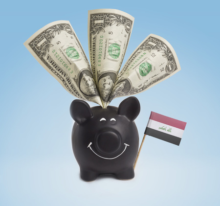 iraq money: One dollar banknote in a smiling piggybank of Iraq.(series)