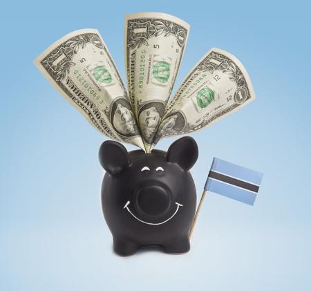 botswanan: One dollar banknote in a smiling piggybank of Botswana.(series)