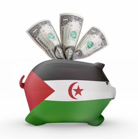 bank western: Side view of a piggy bank with the flag design of Western Sahara.(series)