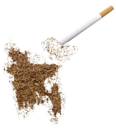 ciggy: The country shape of Bangladesh made of tobacco and a cigarette.(series)