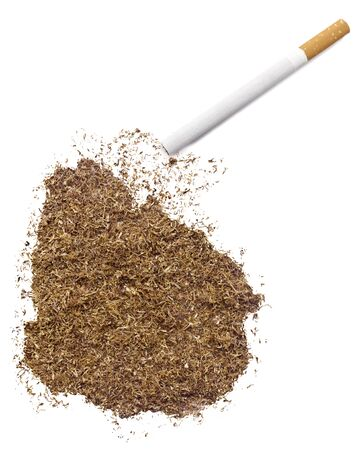 ciggy: The country shape of Uruguay made of tobacco and a cigarette.(series)