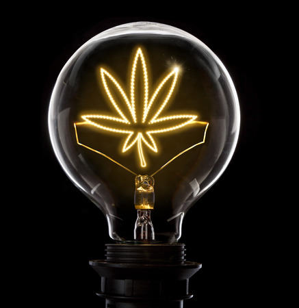 Clean and shiny lightbulb with a weed leaf as a glowing wire.(series) Imagens
