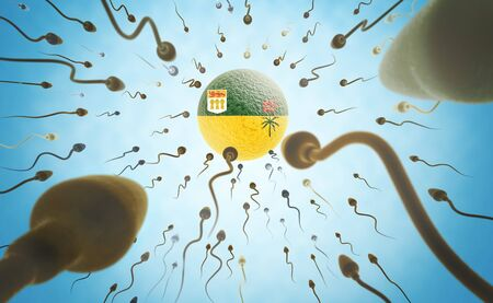 saskatchewan flag: Immigration concept illustration: Sperms of different colors swimming towards an egg cell with the flag of Saskatchewan. Stock Photo