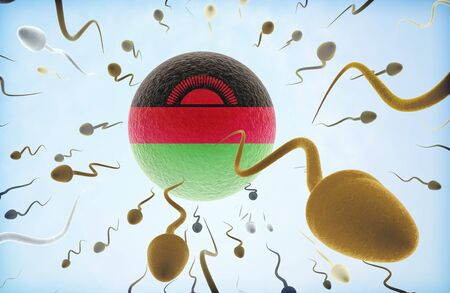 refugee: Emigration concept illustration: Sperms of different colors (for different races) swimming away from an egg cell with the flag of Malawi. Stock Photo