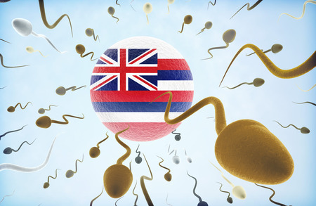 Emigration concept illustration: Sperms of different colors (for different races) swimming away from an egg cell with the flag of Hawaii.