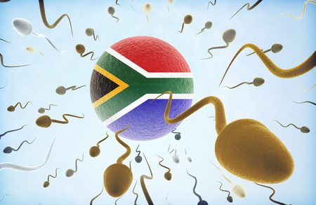 Emigration concept illustration: Sperms of different colors (for different races) swimming away from an egg cell with the flag of South Africa. Stock Photo