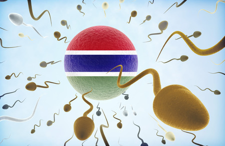 Emigration concept illustration: Sperms of different colors (for different races) swimming away from an egg cell with the flag of Gambia.