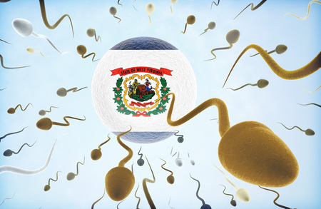 Emigration concept illustration: Sperms of different colors (for different races) swimming away from an egg cell with the flag of West Virginia. Stock Photo