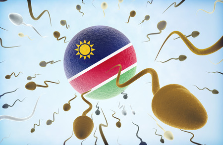 Emigration concept illustration: Sperms of different colors (for different races) swimming away from an egg cell with the flag of Namibia.