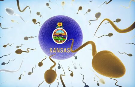 migrating cell: Emigration concept illustration: Sperms of different colors (for different races) swimming away from an egg cell with the flag of Kansas.
