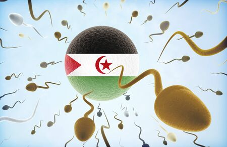 Emigration concept illustration: Sperms of different colors (for different races) swimming away from an egg cell with the flag of Western Sahara