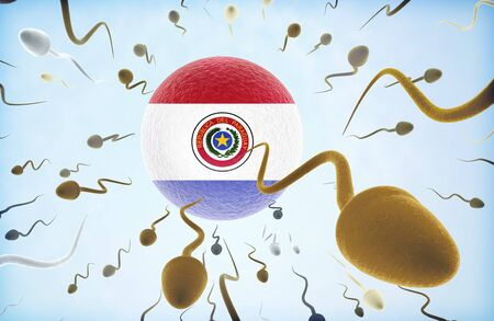 Emigration concept illustration: Sperms of different colors (for different races) swimming away from an egg cell with the flag of Paraguay