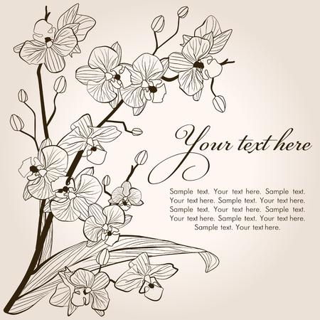 dessin fleurs: Beau millésime fond d'orchidée, vecteur croquis illustration