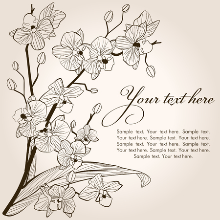Beautiful vintage orchid background, vector sketch illustration Ilustrace