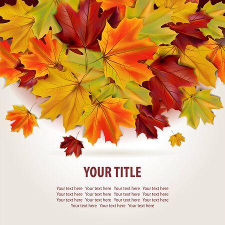 Mooie herfst achtergrond met kleurrijke esdoorn bladeren en plaats voor tekst, afbeelding
