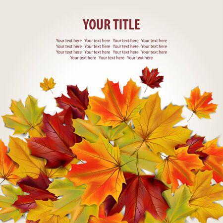 Mooie herfst achtergrond met kleurrijke esdoorn bladeren en plaats voor tekst, afbeelding Stockfoto - 63247669