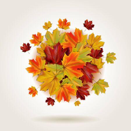 Herfst kleurrijke esdoorn bladeren in een ronde vorm, illustratie Stock Illustratie