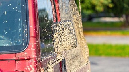 Caked mud after an off-road drive shows on a red SUV's side mirror. Standard-Bild