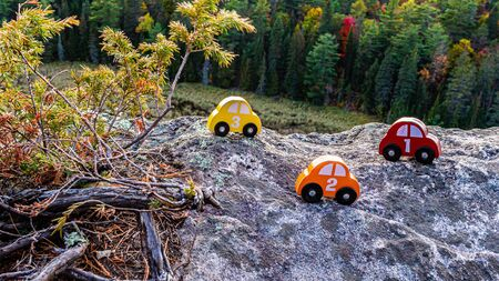A series of red, orange and yellow toy cars, numbered 1, 2 and 3, sit on the rock of a cliff overlooking a forest. The wooden toys are placed next to an evergreen shrub, above a mixed forest.