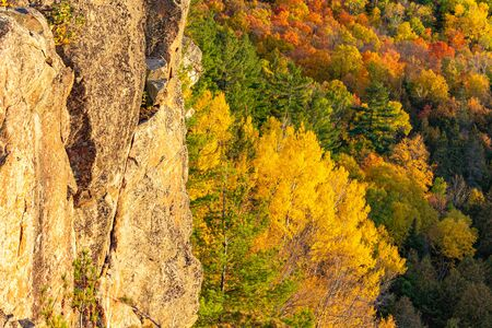 A tall stone cliff stands next to a mixed deciduous and coniferous forest in the fall. The autumn colors of orange, red and yellow, with the evergreen trees, are opposite the golden rock face. Stock fotó